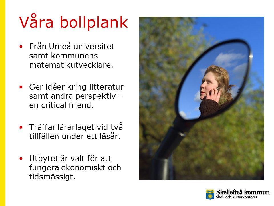 Våra bollplank Från Umeå universitet samt kommunens matematikutvecklare. Ger idéer kring litteratur samt andra perspektiv – en critical friend. Träffa