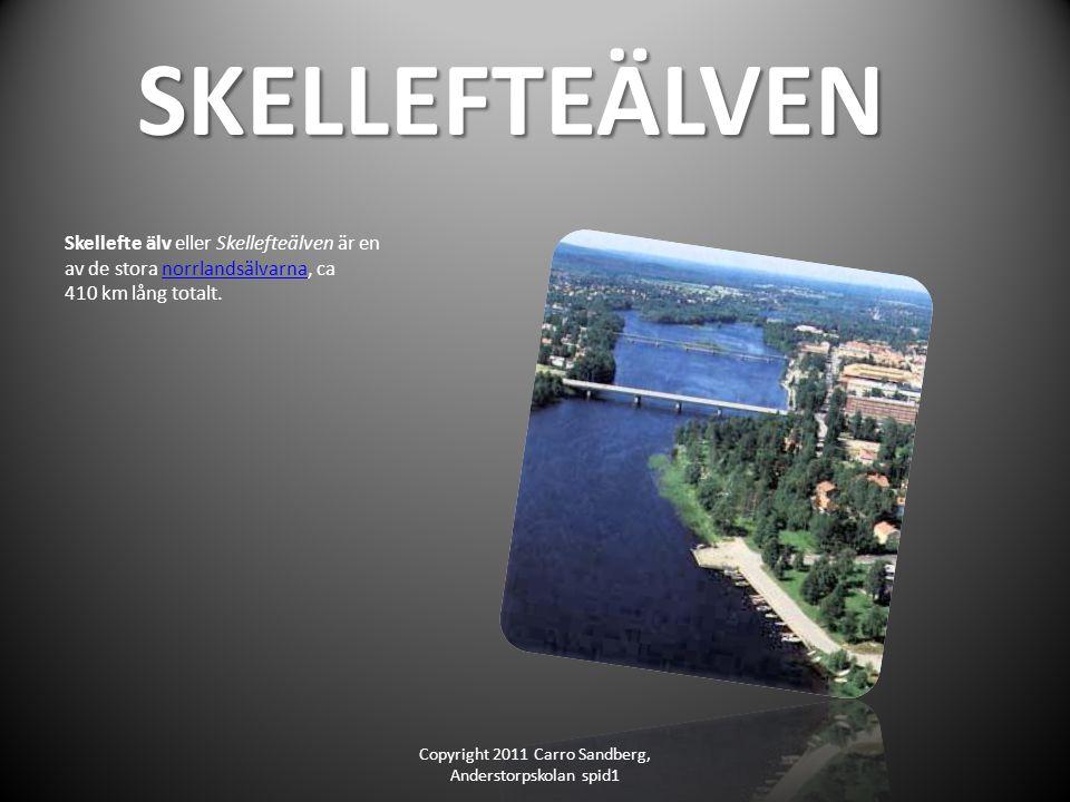 SKELLEFTEÄLVEN SKELLEFTEÄLVEN Skellefte älv eller Skellefteälven är en av de stora norrlandsälvarna, ca 410 km lång totalt.norrlandsälvarna Copyright 2011 Carro Sandberg, Anderstorpskolan spid1