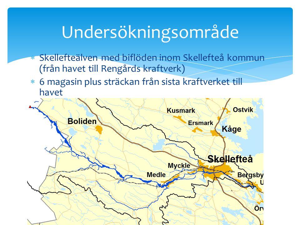  Skellefteälven med biflöden inom Skellefteå kommun (från havet till Rengårds kraftverk)  6 magasin plus sträckan från sista kraftverket till havet
