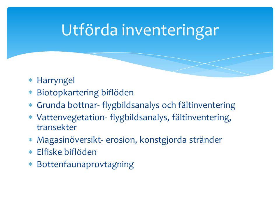  Harryngel  Biotopkartering biflöden  Grunda bottnar- flygbildsanalys och fältinventering  Vattenvegetation- flygbildsanalys, fältinventering, tra