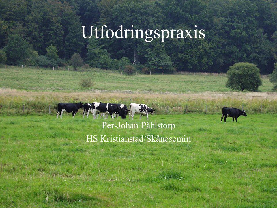 Utfodringspraxis Per-Johan Påhlstorp HS Kristianstad/Skånesemin