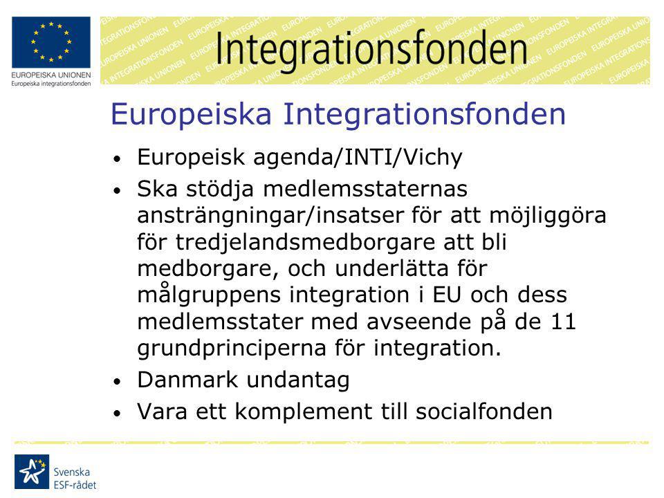 Europeiska Integrationsfonden Europeisk agenda/INTI/Vichy Ska stödja medlemsstaternas ansträngningar/insatser för att möjliggöra för tredjelandsmedborgare att bli medborgare, och underlätta för målgruppens integration i EU och dess medlemsstater med avseende på de 11 grundprinciperna för integration.