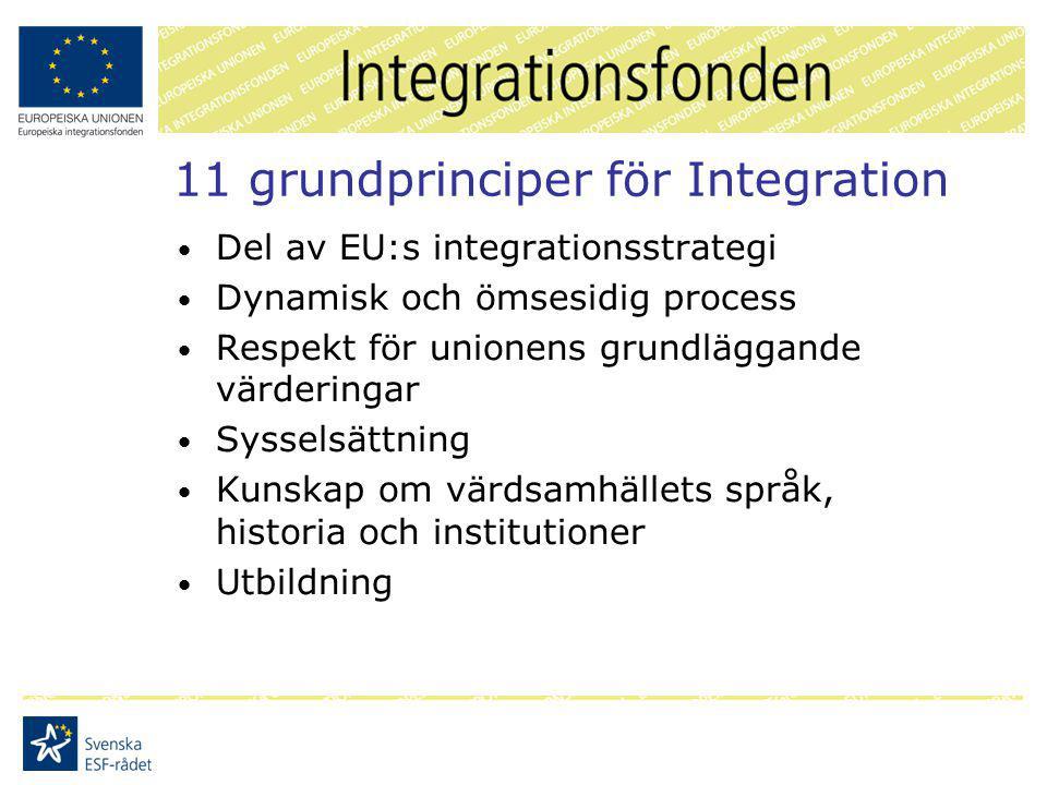 11 grundprinciper för Integration Del av EU:s integrationsstrategi Dynamisk och ömsesidig process Respekt för unionens grundläggande värderingar Sysselsättning Kunskap om värdsamhällets språk, historia och institutioner Utbildning