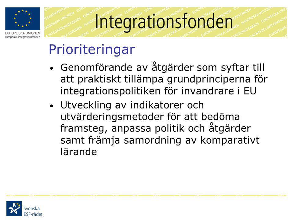 Prioriteringar Genomförande av åtgärder som syftar till att praktiskt tillämpa grundprinciperna för integrationspolitiken för invandrare i EU Utveckling av indikatorer och utvärderingsmetoder för att bedöma framsteg, anpassa politik och åtgärder samt främja samordning av komparativt lärande