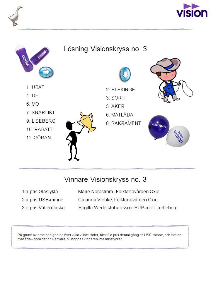 Lösning Visionskryss no. 3 Vinnare Visionskryss no.