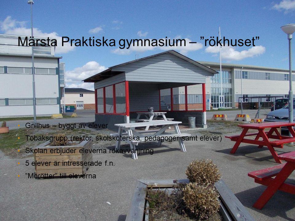 """Märsta Praktiska gymnasium – """"rökhuset"""" Grillhus – byggt av elever Tobaksgrupp (rektor, skolsköterska, pedagoger samt elever) Skolan erbjuder eleverna"""