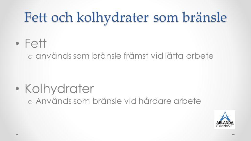 Fett och kolhydrater som bränsle Fett o används som bränsle främst vid lätta arbete Kolhydrater o Används som bränsle vid hårdare arbete