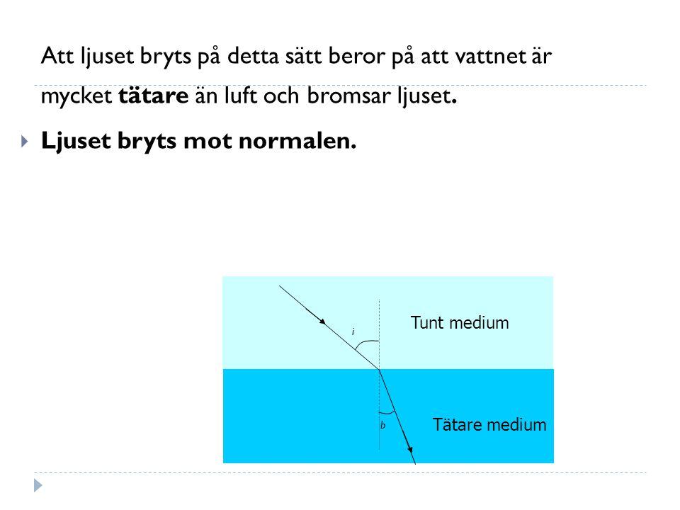 Att ljuset bryts på detta sätt beror på att vattnet är mycket tätare än luft och bromsar ljuset.
