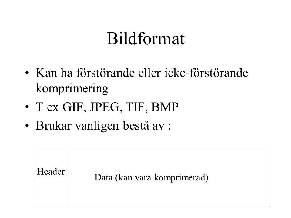Bildformat Kan ha förstörande eller icke-förstörande komprimering T ex GIF, JPEG, TIF, BMP Brukar vanligen bestå av : Data (kan vara komprimerad) Header
