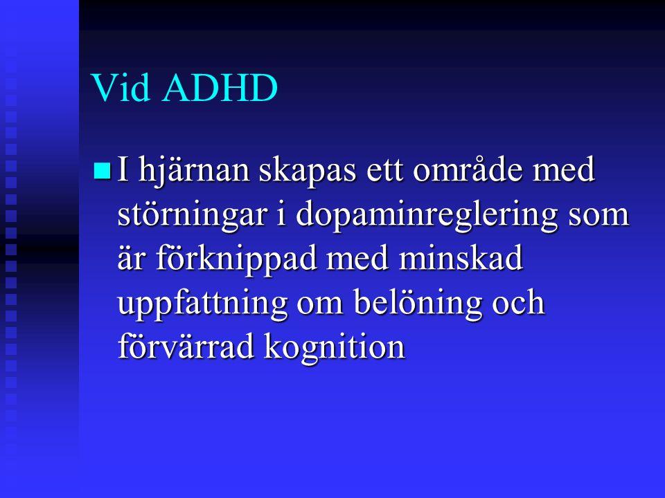 Vid ADHD I hjärnan skapas ett område med störningar i dopaminreglering som är förknippad med minskad uppfattning om belöning och förvärrad kognition I