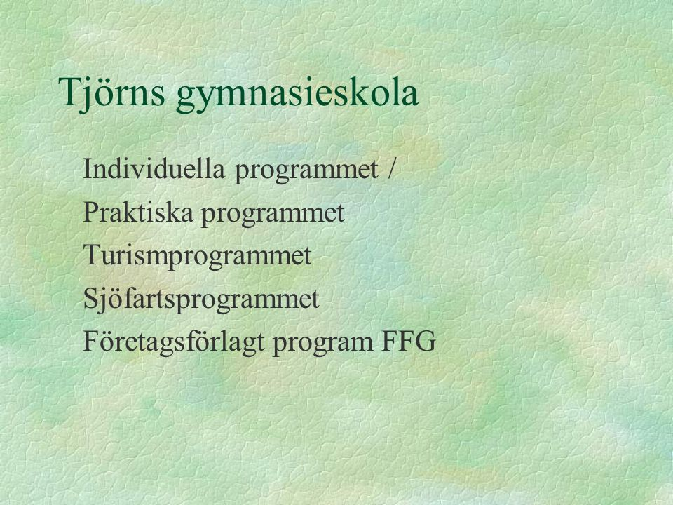 Tjörns gymnasieskola Individuella programmet / Praktiska programmet Turismprogrammet Sjöfartsprogrammet Företagsförlagt program FFG