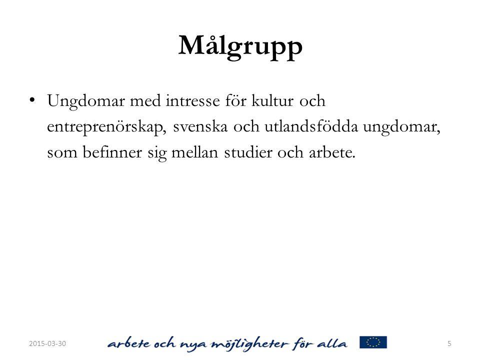 Målgrupp Ungdomar med intresse för kultur och entreprenörskap, svenska och utlandsfödda ungdomar, som befinner sig mellan studier och arbete.
