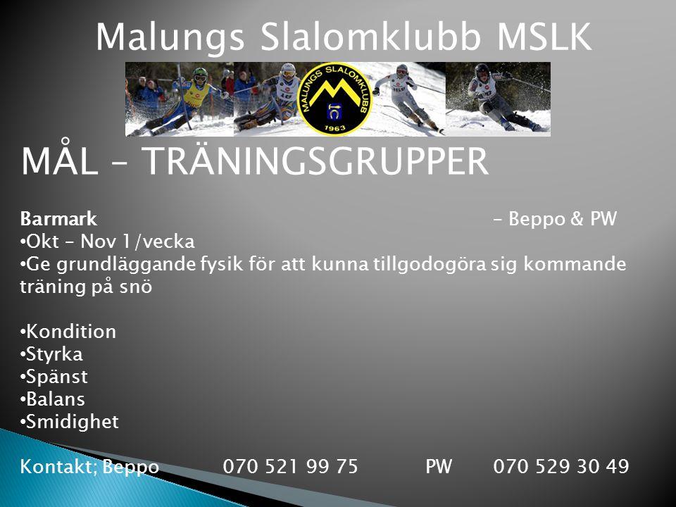 Malungs Slalomklubb MSLK MÅL – TRÄNINGSGRUPPER Barmark – Beppo & PW Okt – Nov 1/vecka Ge grundläggande fysik för att kunna tillgodogöra sig kommande t