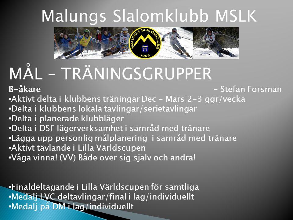 Malungs Slalomklubb MSLK MÅL – TRÄNINGSGRUPPER B-åkare – Stefan Forsman Aktivt delta i klubbens träningar Dec – Mars 2-3 ggr/vecka Delta i klubbens lo