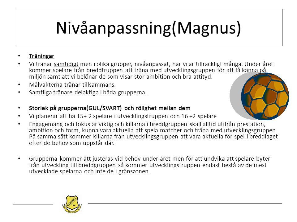 Nivåanpassning(Magnus) Träningar Vi tränar samtidigt men i olika grupper, nivåanpassat, när vi är tillräckligt många. Under året kommer spelare från b
