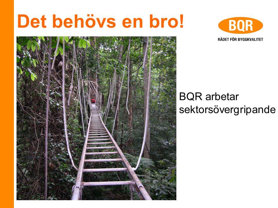 Det behövs en bro! BQR arbetar sektorsövergripande