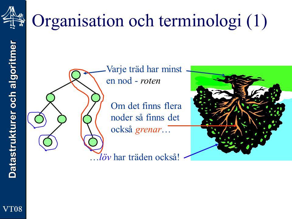 Datastrukturer och algoritmer VT08 Organisation och terminologi (1) Varje träd har minst en nod - roten Om det finns flera noder så finns det också gr