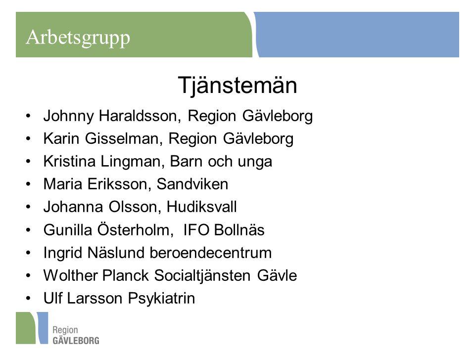 Tjänstemän Johnny Haraldsson, Region Gävleborg Karin Gisselman, Region Gävleborg Kristina Lingman, Barn och unga Maria Eriksson, Sandviken Johanna Ols