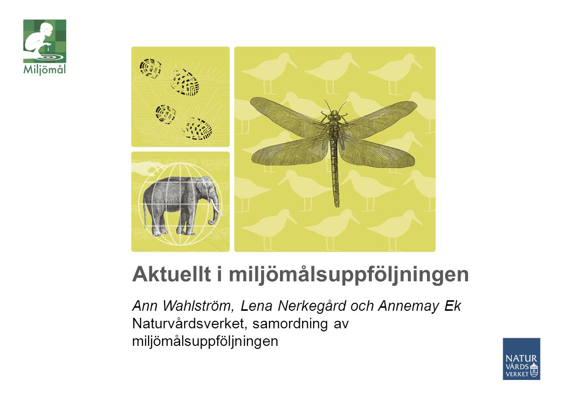 Aktuellt i miljömålsuppföljningen Ann Wahlström, Lena Nerkegård och Annemay Ek Naturvårdsverket, samordning av miljömålsuppföljningen