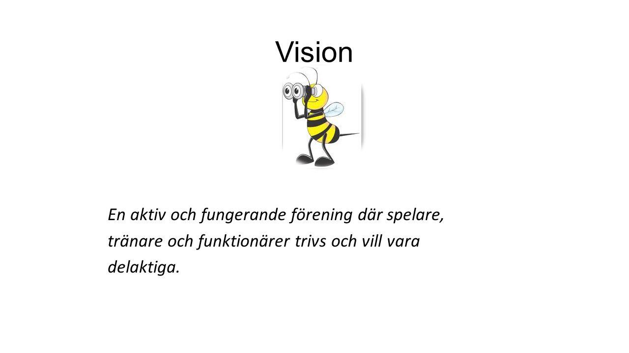 En aktiv och fungerande förening där spelare, tränare och funktionärer trivs och vill vara delaktiga. Vision