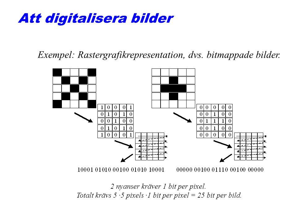 Att digitalisera bilder 2 nyanser kräver 1 bit per pixel. Totalt krävs 5 ·5 pixels ·1 bit per pixel = 25 bit per bild. Exempel: Rastergrafikrepresenta