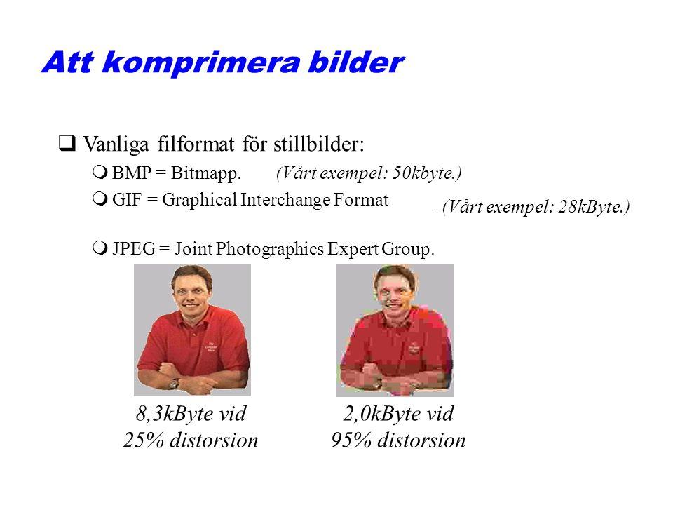 qVanliga filformat för stillbilder: mBMP = Bitmapp. mGIF = Graphical Interchange Format mJPEG = Joint Photographics Expert Group. (Vårt exempel: 50kby