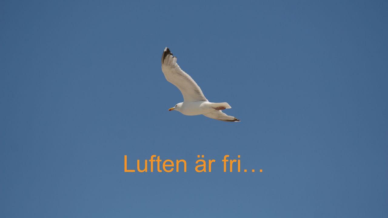 Luften är fri…
