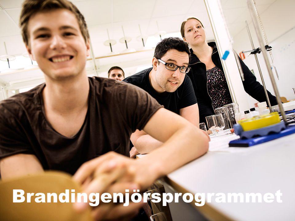 Institutionen för Samhällsbyggnad och Naturresurser – SBN | 12 | www.ltu.se/org/sbn Brandingenjörsprogrammet