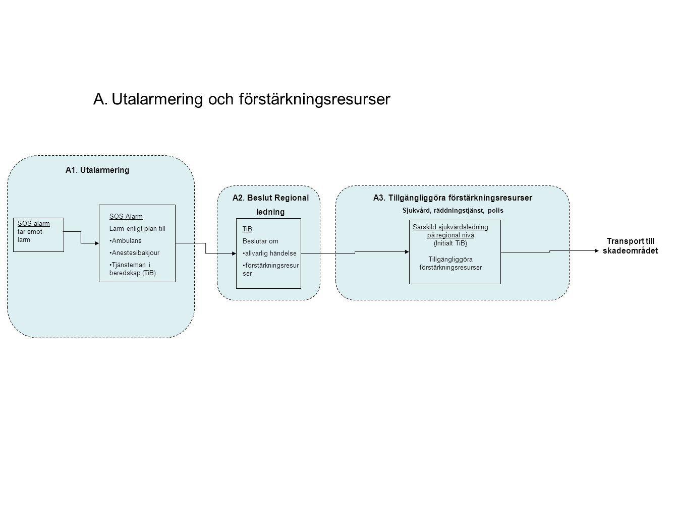 Livlös Sjukvårdspersonal/ Medicinsk ansvarig på skadeområdet Prioritering/ sortering av drabbade B1.