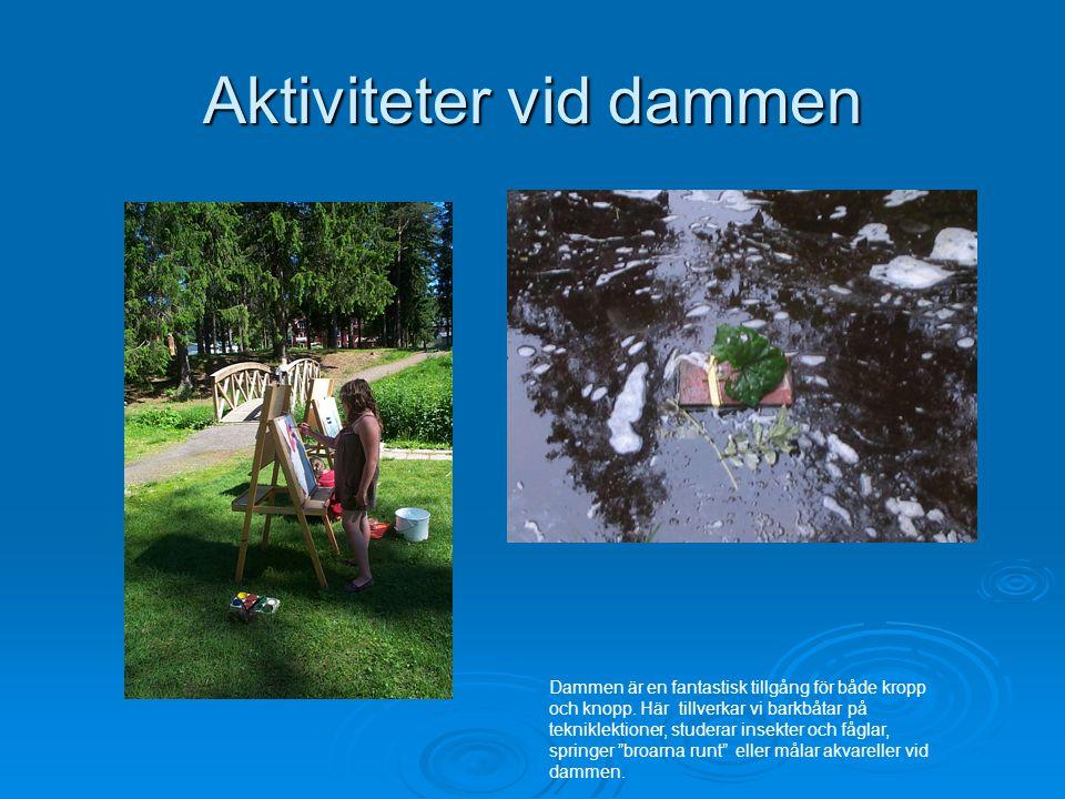 Aktiviteter vid dammen Dammen är en fantastisk tillgång för både kropp och knopp.