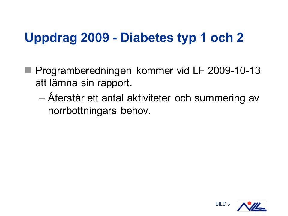 BILD 3 Uppdrag 2009 - Diabetes typ 1 och 2 Programberedningen kommer vid LF 2009-10-13 att lämna sin rapport.