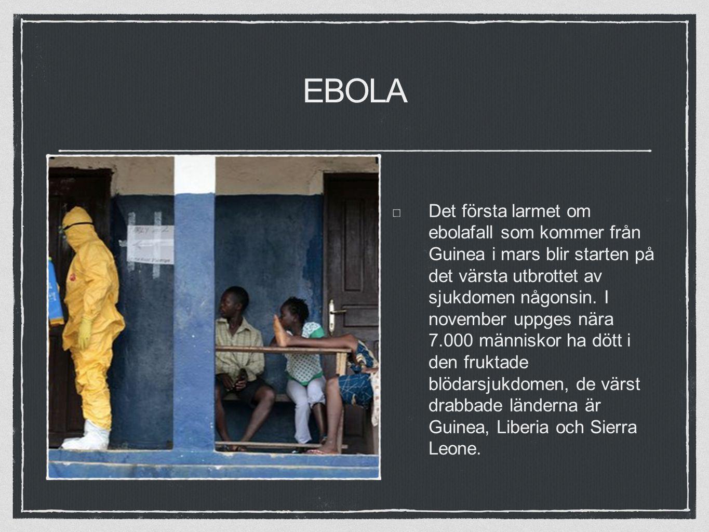 EBOLA Det första larmet om ebolafall som kommer från Guinea i mars blir starten på det värsta utbrottet av sjukdomen någonsin.