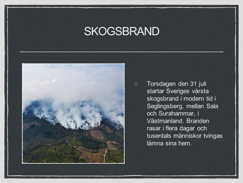 SKOGSBRAND Torsdagen den 31 juli startar Sveriges värsta skogsbrand i modern tid i Seglingsberg, mellan Sala och Surahammar, i Västmanland.