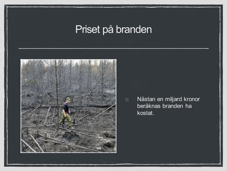 Priset på branden Nästan en miljard kronor beräknas branden ha kostat.