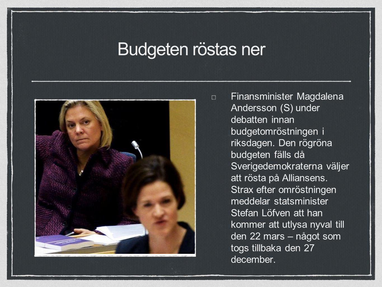 Budgeten röstas ner Finansminister Magdalena Andersson (S) under debatten innan budgetomröstningen i riksdagen.