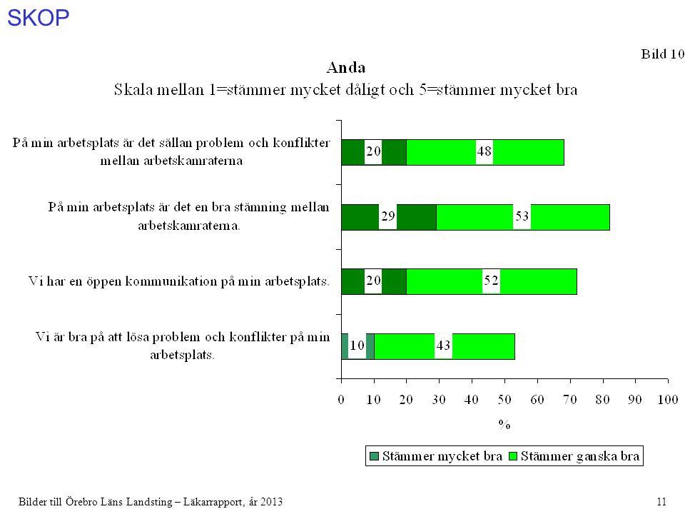 SKOP Bilder till Örebro Läns Landsting – Läkarrapport, år 201311