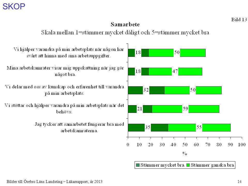SKOP Bilder till Örebro Läns Landsting – Läkarrapport, år 201314