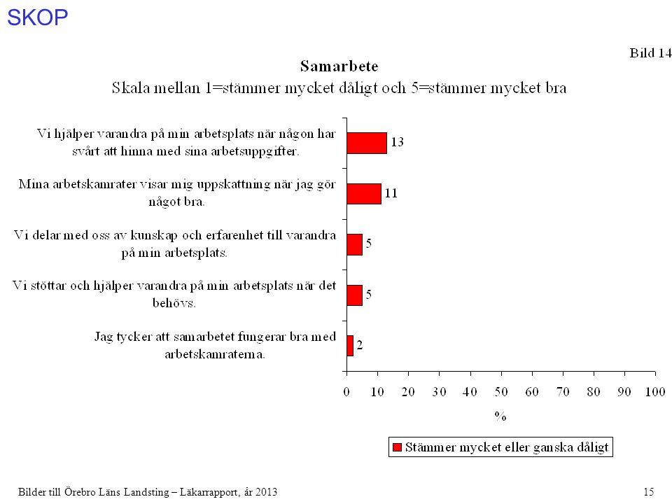 SKOP Bilder till Örebro Läns Landsting – Läkarrapport, år 201315