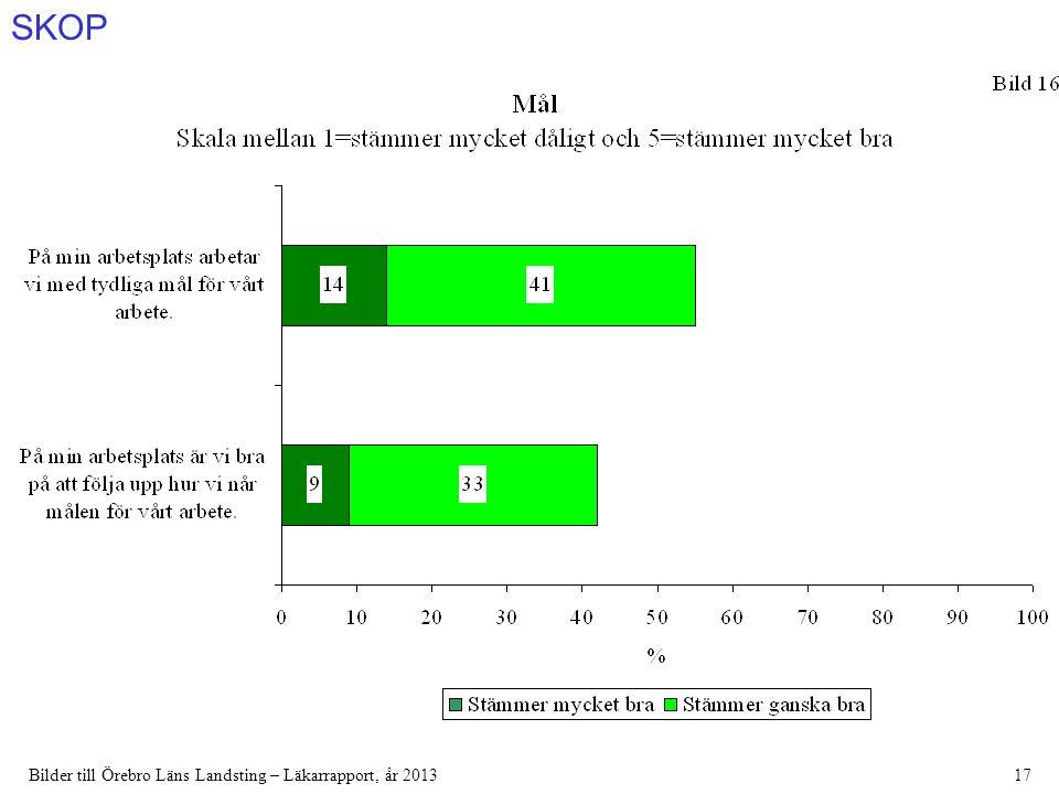 SKOP Bilder till Örebro Läns Landsting – Läkarrapport, år 201317