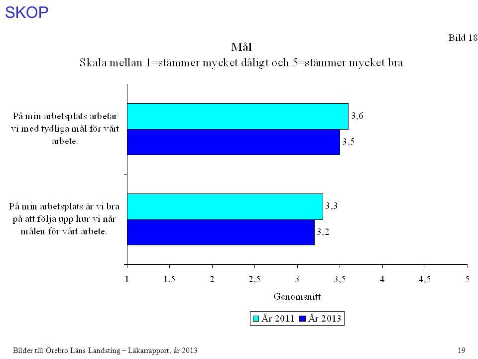 SKOP Bilder till Örebro Läns Landsting – Läkarrapport, år 201319