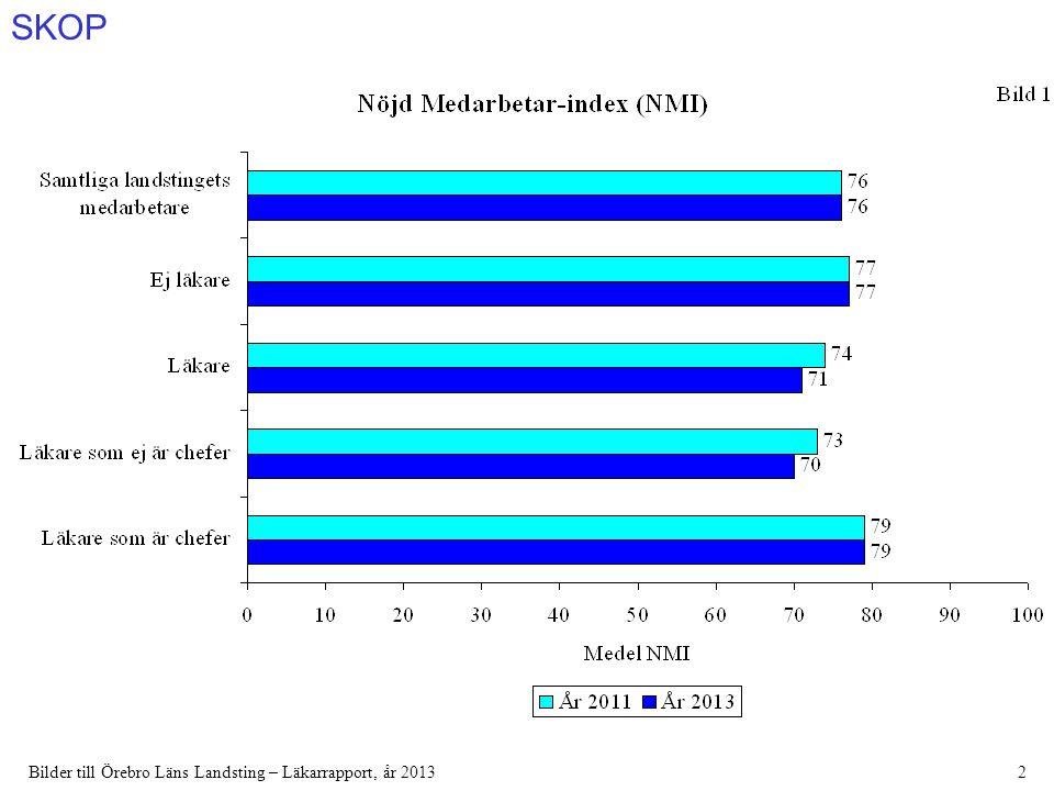 SKOP Bilder till Örebro Läns Landsting – Läkarrapport, år 201313