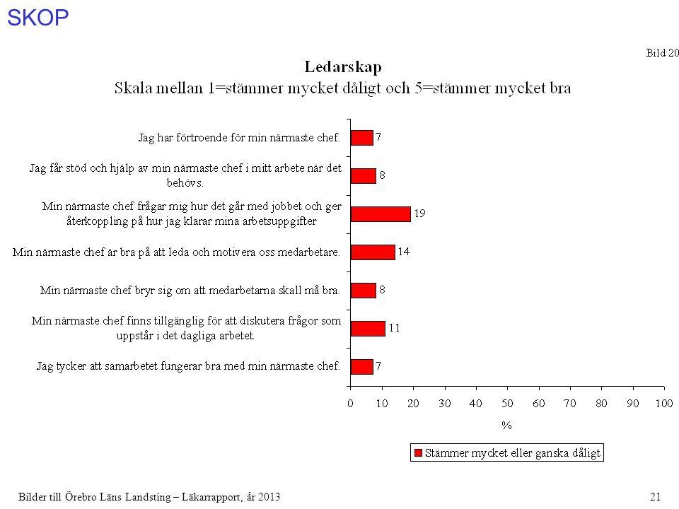 SKOP Bilder till Örebro Läns Landsting – Läkarrapport, år 201321