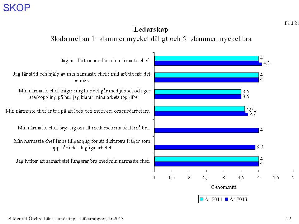 SKOP Bilder till Örebro Läns Landsting – Läkarrapport, år 201322