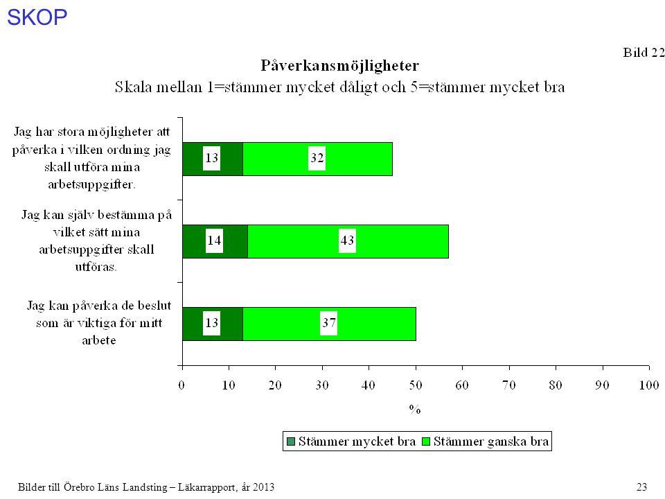 SKOP Bilder till Örebro Läns Landsting – Läkarrapport, år 201323