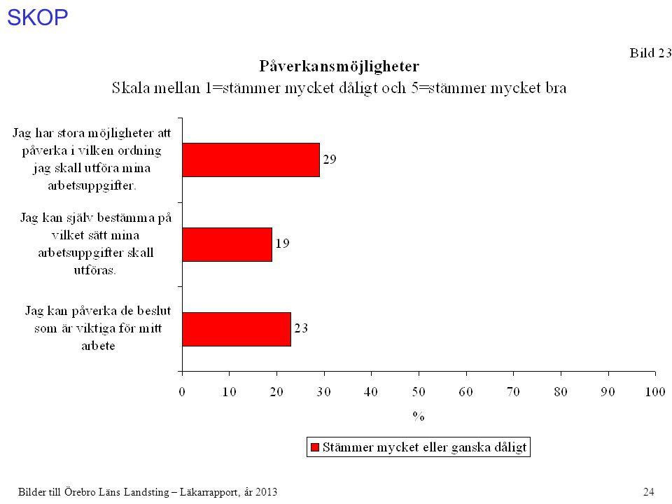 SKOP Bilder till Örebro Läns Landsting – Läkarrapport, år 201324