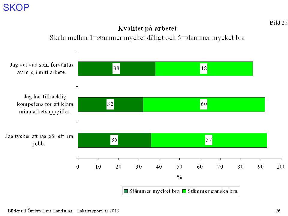 SKOP Bilder till Örebro Läns Landsting – Läkarrapport, år 201326