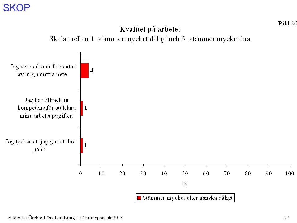 SKOP Bilder till Örebro Läns Landsting – Läkarrapport, år 201327