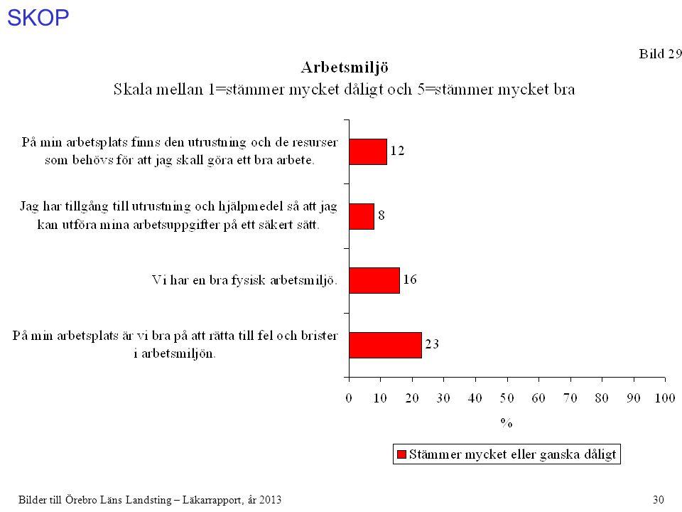 SKOP Bilder till Örebro Läns Landsting – Läkarrapport, år 201330