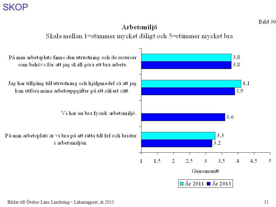 SKOP Bilder till Örebro Läns Landsting – Läkarrapport, år 201331