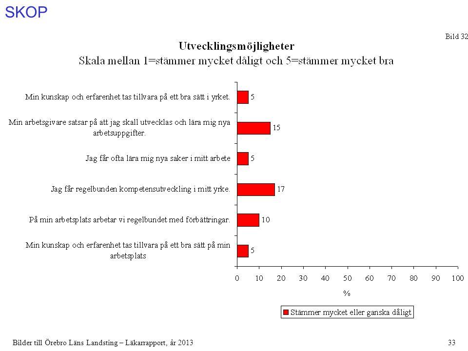 SKOP Bilder till Örebro Läns Landsting – Läkarrapport, år 201333